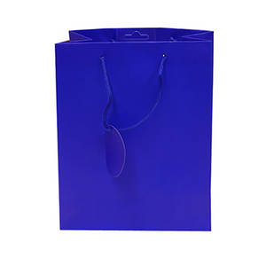 Small Gift Bag Blue