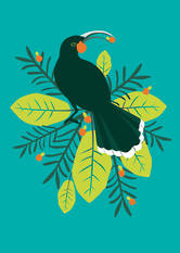 New Zealand Card Birds Of A Feather Huia