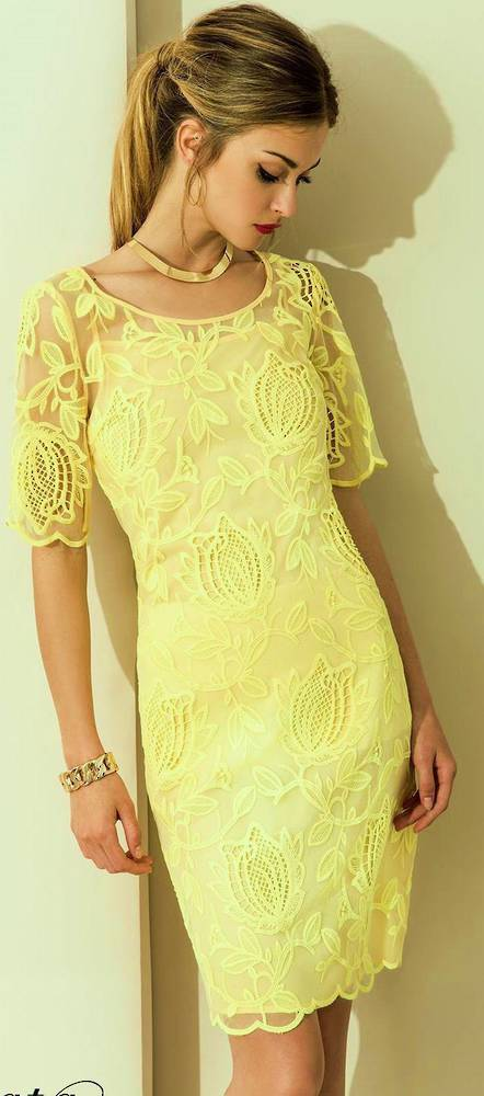 Lace dress with a sleeve to the elbow
