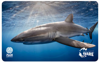 Project AWARE Shark Conservation