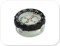 Genesis Compass Module