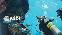 Enriched Air Diver (Nitrox)