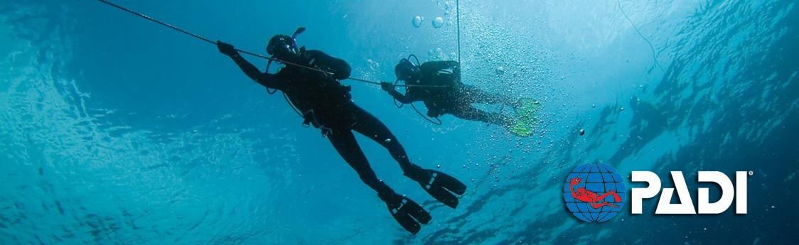 Performance Diver Banner