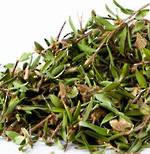 Manuka Dried Herb