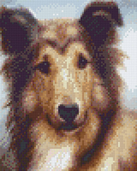 Young Collie Four [4] Baseplate PixelHobby Mini-mosaic Art Kit