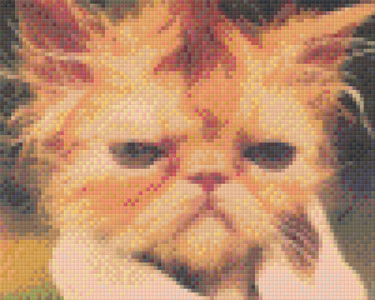 Grumpy Wet Cat Four [4] Baseplate PixelHobby Mini-mosaic Art Kits