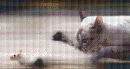 Cat & Mouse Six [6] Baseplate PixelHobby Mini-mosaic Art Kits