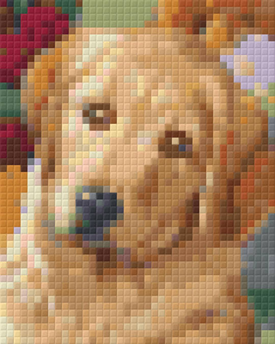 Golden Retriever One [1] Baseplate PixelHobby Mini-mosaic Art Kits