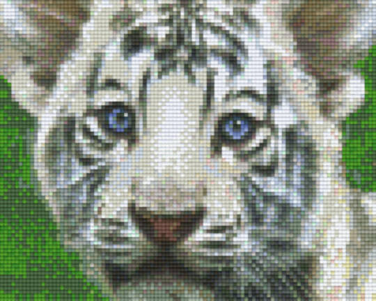 Blue Eyed White Baby Tiger Four [4] Baseplate PixelHobby Mini-mosaic Art Kits