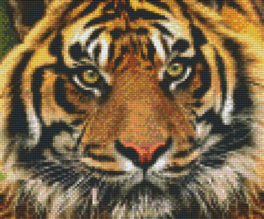 Tiger Six [6] Baseplate PixleHobby Mini-mosaic Art Kits