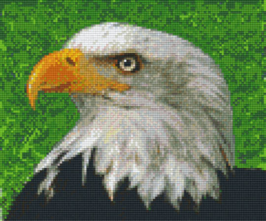 Eagle Head Six [6] Baseplate PixleHobby Mini-mosaic Art Kits