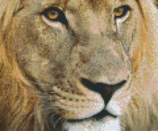 Lion Six [6] Baseplate PixleHobby Mini-mosaic Art Kits