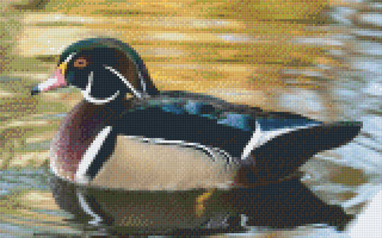 Duck Eight [8] Baseplate PixelHobby Mini-mosaic Art Kits