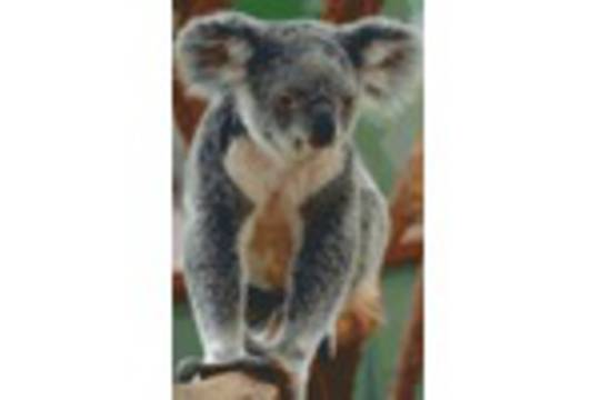 Koala Eight [8] Baseplate PixelHobby Mini-mosaic Art Kits