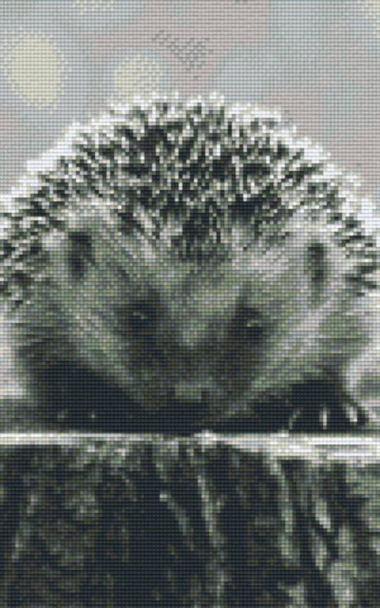 Hedgehog Eight [8] Baseplate PixelHobby Mini-mosaic Art Kits
