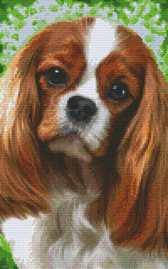 Cavalier King Charles Eight [8] Baseplate PixelHobby Mini-mosaic Art Kits