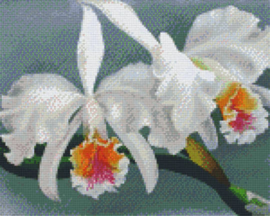 Orchids Nine [9] Baseplates PixelHobby Mini- mosaic Art Kits