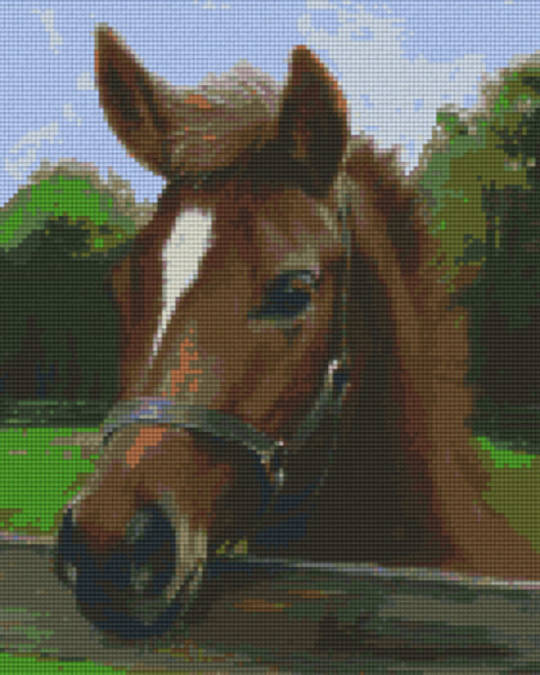 Horses Head Nine [9] Baseplate PixelHobby Mini-mosaic Art Kits