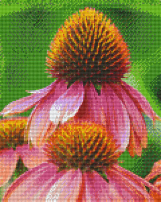 Red Daisies Nine [9] Baseplates PixelHobby Mini- mosaic Art Kits