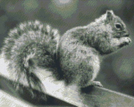 Squirrel In Black & White Nine [9] Baseplate PixelHobby Mini-mosaic Art Kits