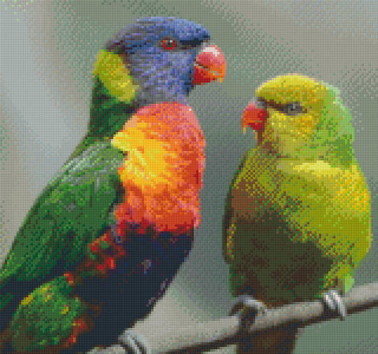 Two Parrots Twelve [12] Baseplate PixelHobby Mini-mosaic Art Kit