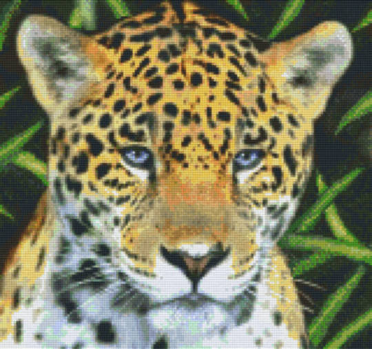 Jaguar Twelve [12] Baseplate PixelHobby Mini-mosaic Art Kits