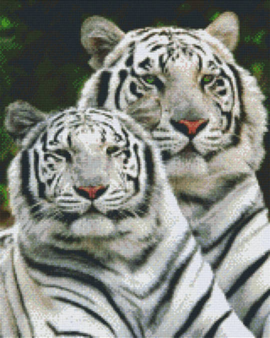 White Tigers Sixteen [16] Baseplate PixelHobby Mini-mosaic Art Kit