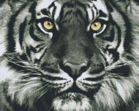 Black And White Tiger Head Sixteen [16] Baseplate PixelHobby MIni-mosaic Art Kit
