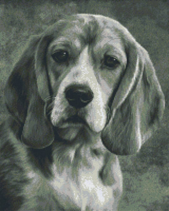 Black And White Beagle Sixteen [16] Baseplate PixelHobby Mini-mosaic Art Kits