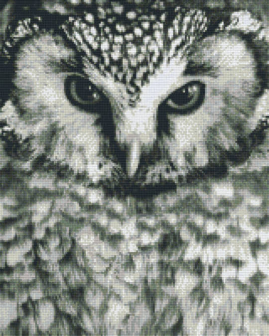 Black And White Owl Sixteen [16] Baseplate PixelHobby Mini-mosaic Art Kits