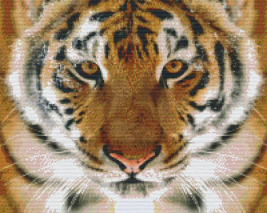 Tiger Face Sixteen [16] Baseplate PixelHobby MIni-mosaic Art Kit