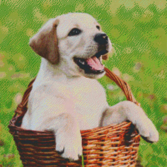 Dog In Basket Twenty [20] Baseplate PixelHobby Mini-mosaic Art Kits