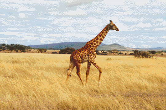 Giraffe In The Field Thirty [30] Baseplate PixelHobby Mini-mosaic Art Kits