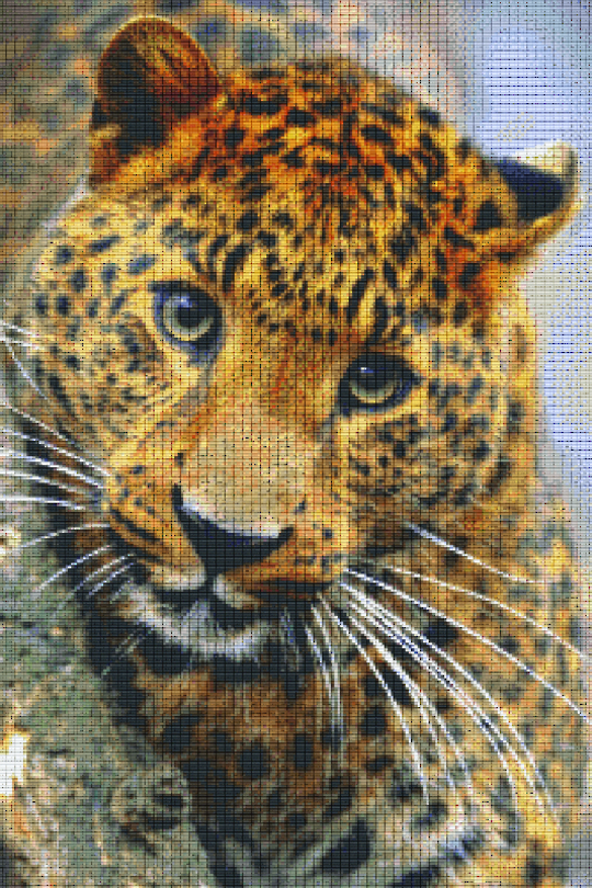 Cheetah Thirty [30] Baseplate PixelHobby Mini-mosaic Art Kits