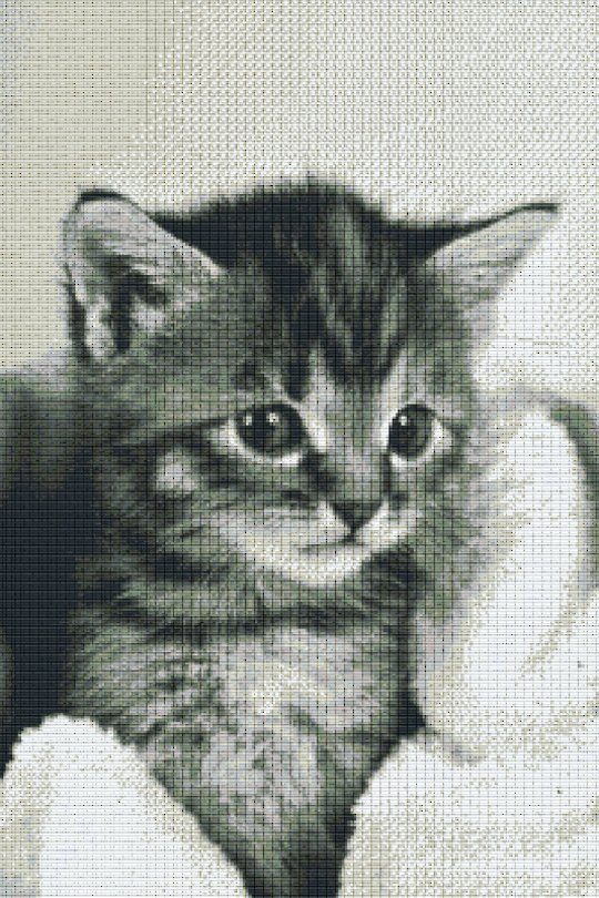 Kitten Thirty [30] Baseplate PixelHobby Mini-mosaic Art Kits