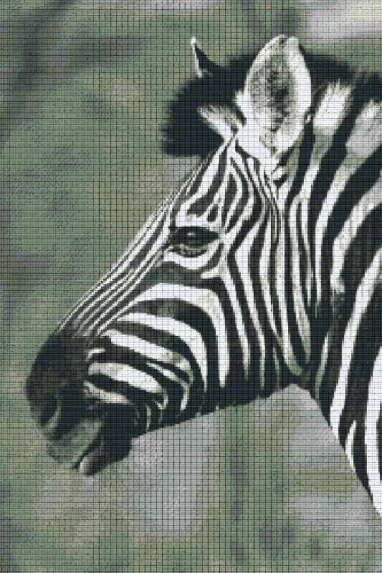 Zebra Thirty [30] Baseplate PixelHobby Mini-mosaic Art Kits