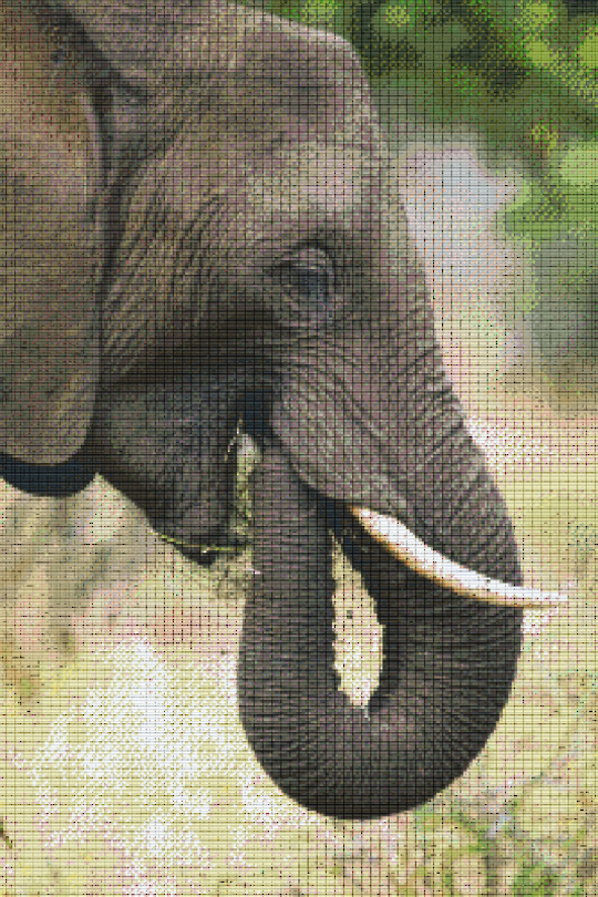Elephant Thirty [30] Baseplate PixelHobby Mini-mosaic Art Kits