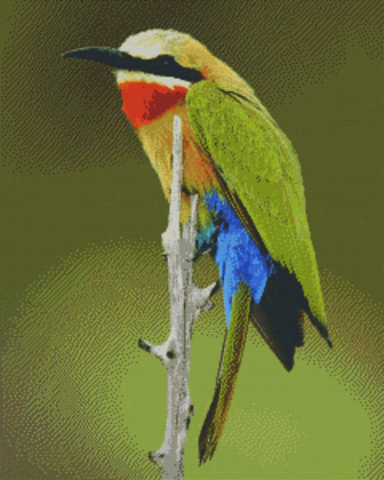 Bird On Branch Thirty Six [36] Baseplate PixelHobby Mini-mosaic Art Kits