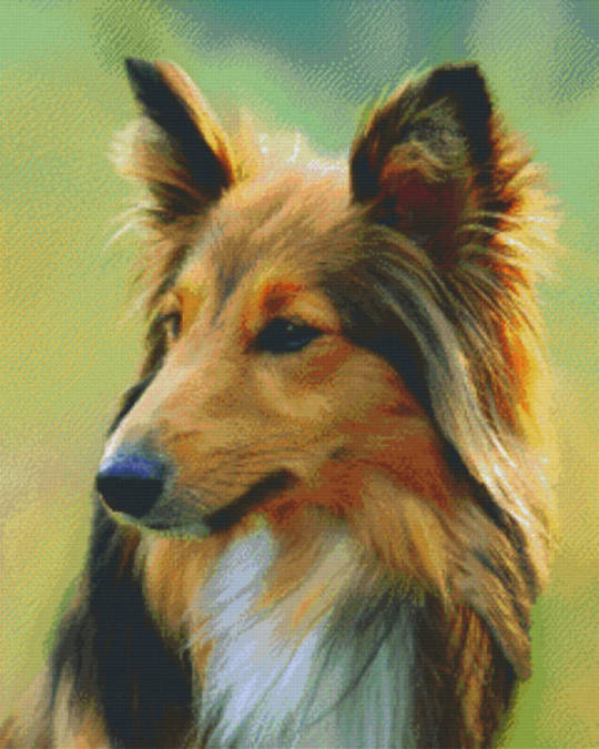 Shetland Dog Thirty Six [36] Baseplate PixelHobby Mini-mosaic Art Kits