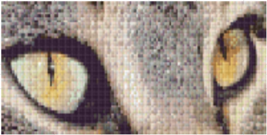 Cats Eyes- Three [3] Baseplate PixelHobby Mini-mosaic Art Kit