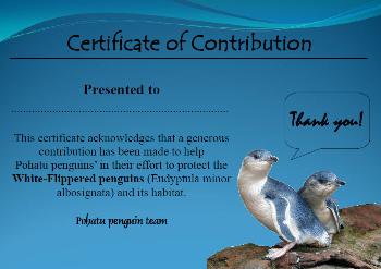 Adoption certificate for Pohatu penguin