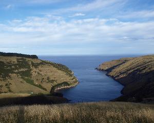 Pohatu marine reserve