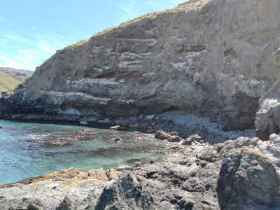 Stunning scenery and cliffs around Banks Peninsula