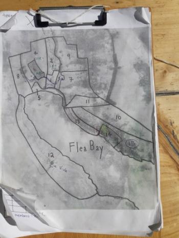 Survey map of Pohatu