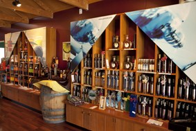Inside the Vines Village Tasting Room