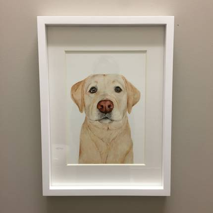 For Me by Dee - Ollie the Labrador