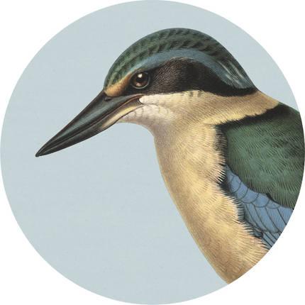 Cork Backed Coaster - Blue Kingfisher