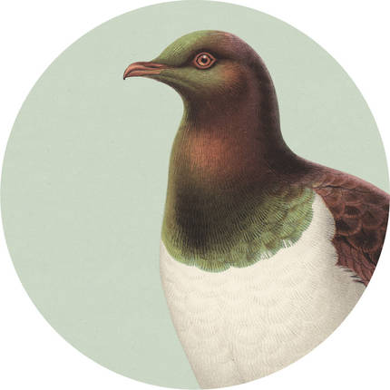 Cork Backed Coaster - Green Kereru