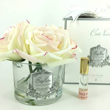 Perfumed Rose Bunch (Five Roses) - Pink Blush Clear