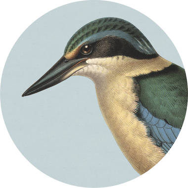 Cork Backed Coaster - Blue Kingfisher